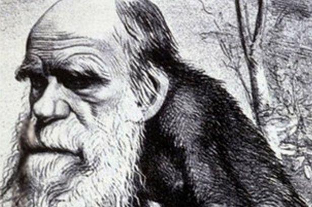 Photo of Түркияда окуу китептеринен эволюция теориясын алып салышты