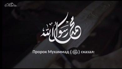 Photo of Бактылуулуктун себептери (пайдалуу сабак). Шейх Чубак ажы.