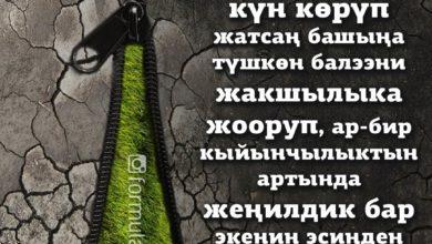 Photo of 📍Бекерчиликти айдап жумуш менен алек бол